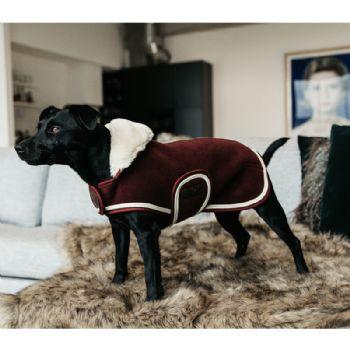 Kentucky Heavy Fleece Dog Coat